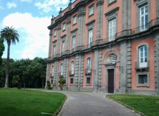 Musei, Manager a tempo determinato con uno stipendio tra i 78 e 145 mila euro