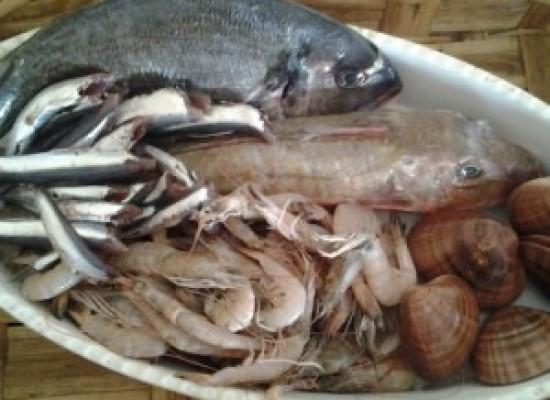 Pesce, Campania al top per il fresco