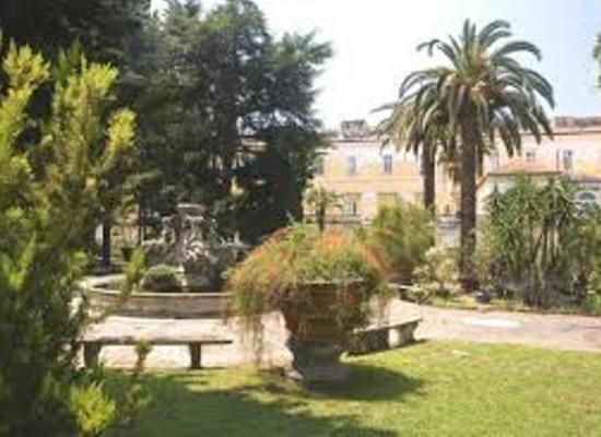 Napoli festeggia gli alberi