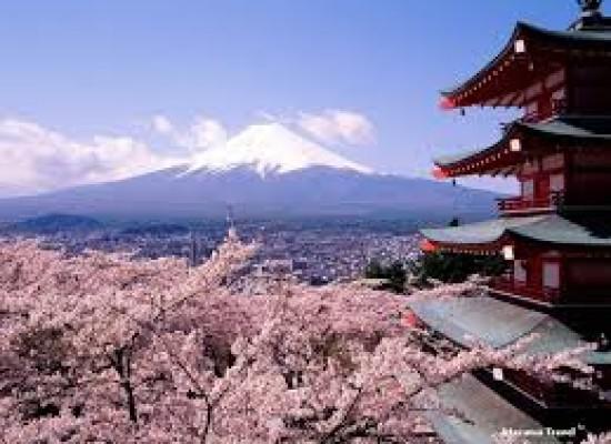 Imprese, vola in Giappone con l'idea migliore