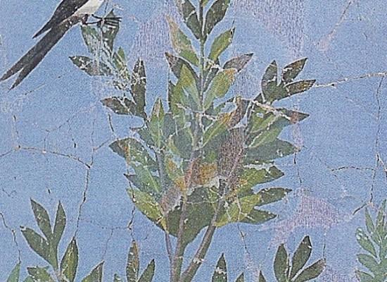 Pompei,  studenti in veste di giardinieri archeologi