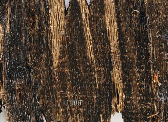 Mostre, Oro nero, materiali che si trasformano in U'Arte
