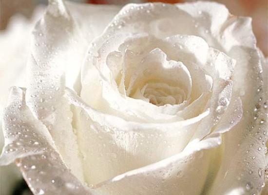 Montesanto si veste di bianco