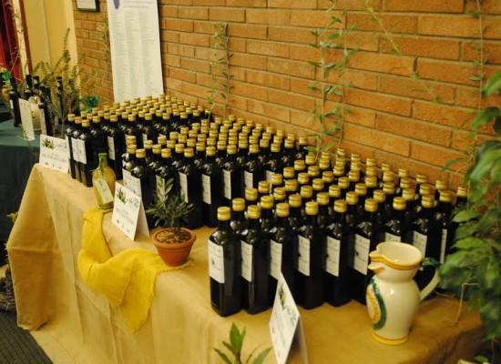 Olio extravergine di oliva, il petrolio italiano sconosciuto tra industria ed artigianato