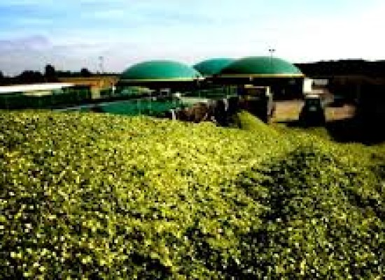 Energia, da rifiuti organici a produzione biogas, come progettare gli impianti
