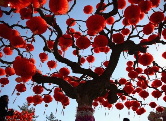 Napoli festeggia il Capodanno cinese