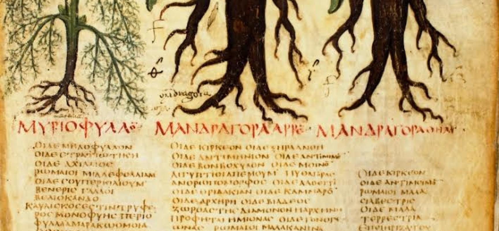 Biblioteca Nazionale, dalla Medicina Archeologica alla Medicina Illuminista, in mostra Ippocrate, Dioscoride, Galeno e Cirillo
