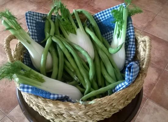 Finocchi e fave, insalata cotta & cruda