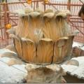 Fontana Carciofo, l'acqua risgorga in piazza Trieste e Trento