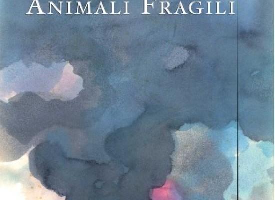 Animali fragili, storia di un fotografo e non solo