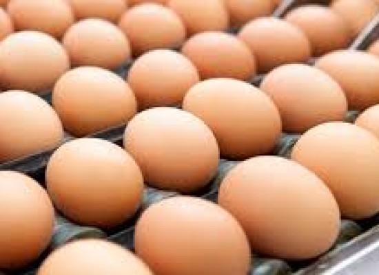 Salute, si alle Uova no agli Zuccheri, le nuove frontiere dell'alimentazione