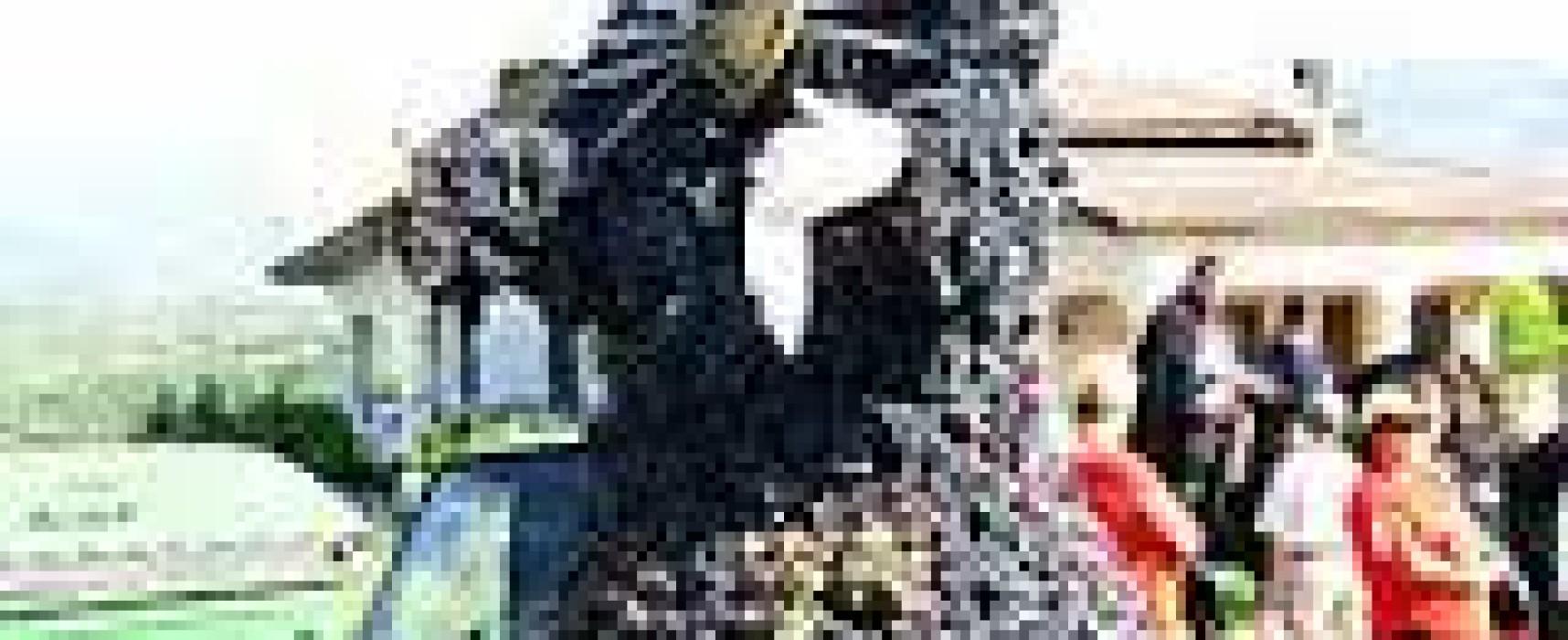 Il rito del vino per la Madonna dell'Addolorata