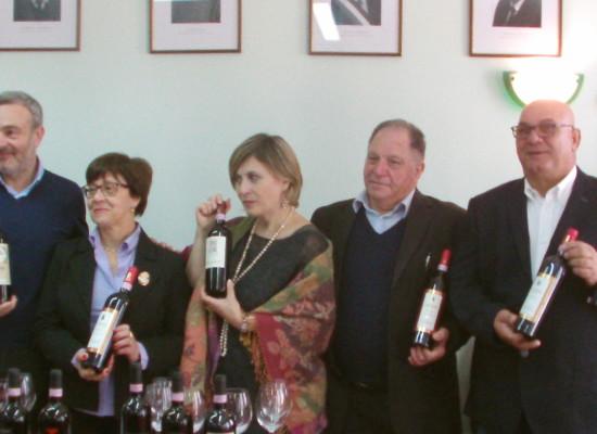 Taurasi, il vino va al Museo