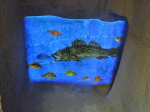 Rione Terra il pesce
