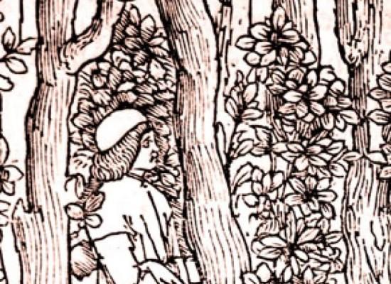 Manunzio il primo editore in mostra a Napoli