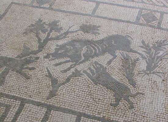 Pompei ecco le 'nuove meraviglie' Palestra, Domus, Orto e Odeion