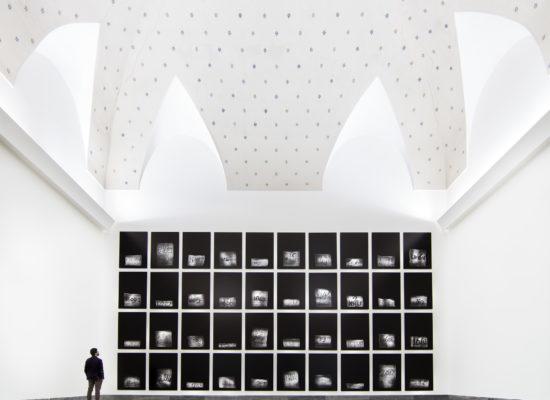 Libri come anelli di alberi nell'arte di Antonio Biasucci