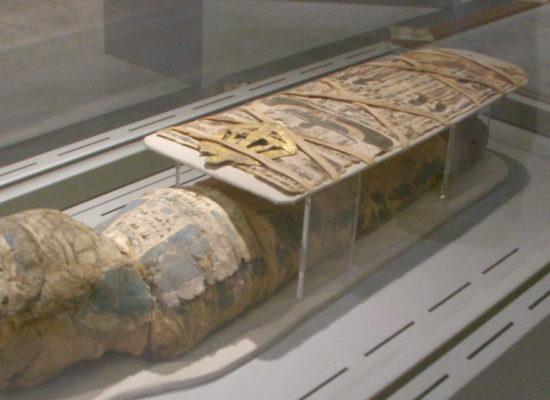 Polvere di mummia per curare i malati… i misteri della collezione egizia