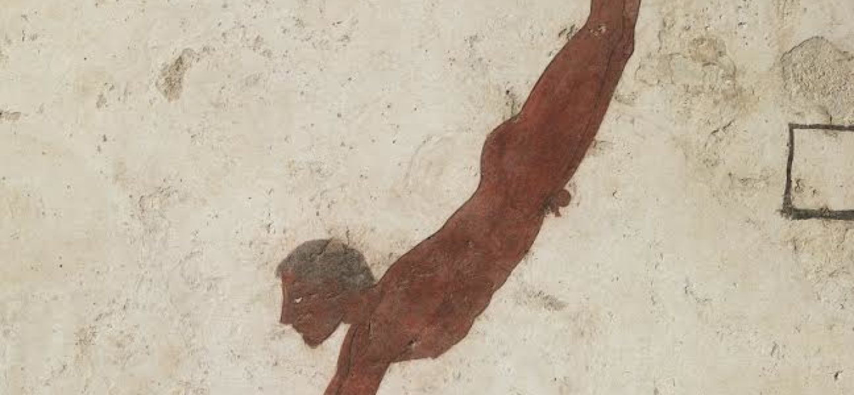 Tomba del Tuffatore, nuove scoperte