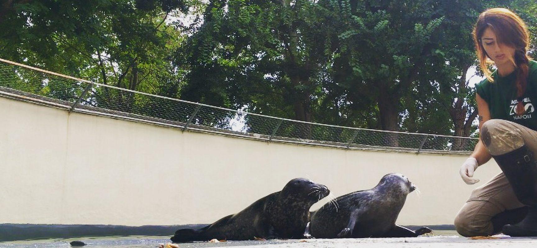 Napoli è il Darwin Day
